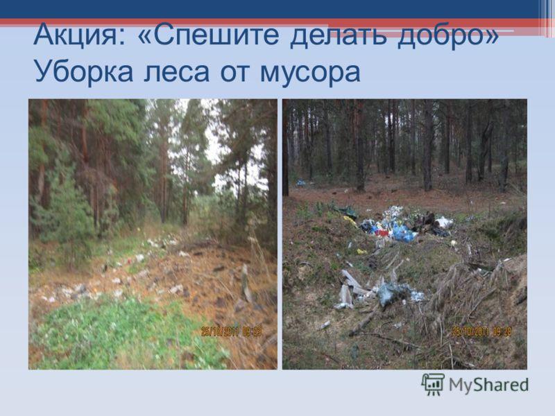 Акция: «Спешите делать добро» Уборка леса от мусора
