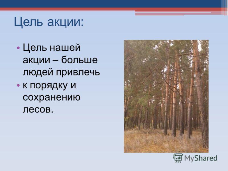 Цель акции: Цель нашей акции – больше людей привлечь к порядку и сохранению лесов.