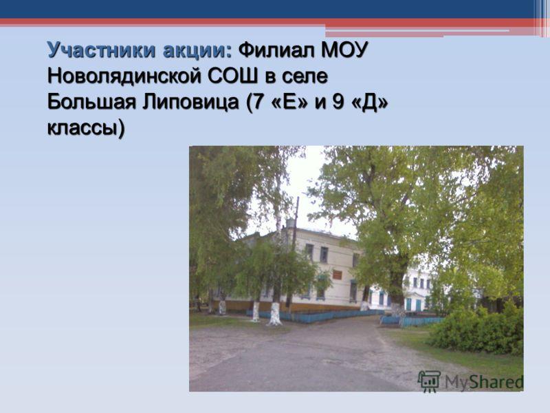 Участники акции: Филиал МОУ Новолядинской СОШ в селе Большая Липовица (7 «Е» и 9 «Д» классы)