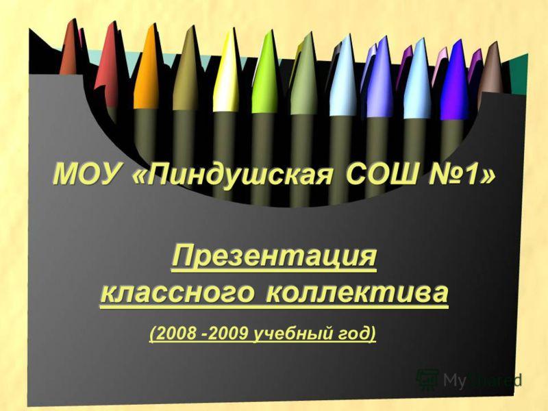 (2008 -2009 учебный год)