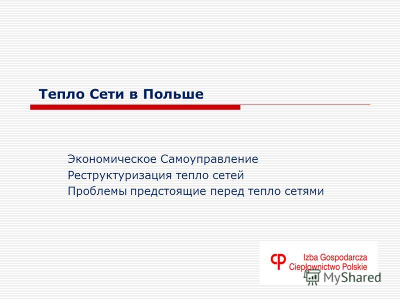 Тепло Сети в Польше Экономическое Самоуправление Реструктуризация тепло сетей Проблемы предстоящие перед тепло сетями