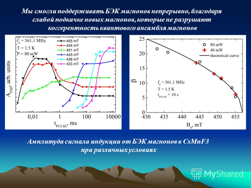 Амплитуда сигнала индукции от БЭК магнонов в CsMnF3 при различных условиях Мы смогли поддерживать БЭК магнонов непрерывно, благодаря слабой подкачке новых магнонов, которые не разрушают коггерентность квантового ансамбля магнонов