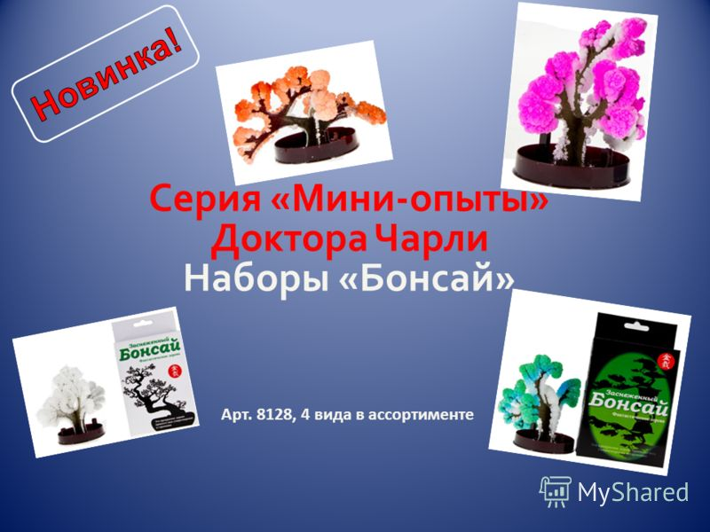 Арт. 8128, 4 вида в ассортименте Серия «Мини-опыты» Доктора Чарли Наборы «Бонсай»