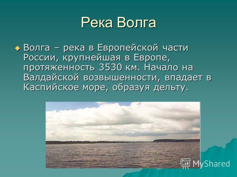 Река Волга Волга – река в Европейской части России, крупнейшая в Европе, протяженность 3530 км. Начало на Валдайской возвышенности, впадает в Каспийское море, образуя дельту. Волга – река в Европейской части России, крупнейшая в Европе, протяженность