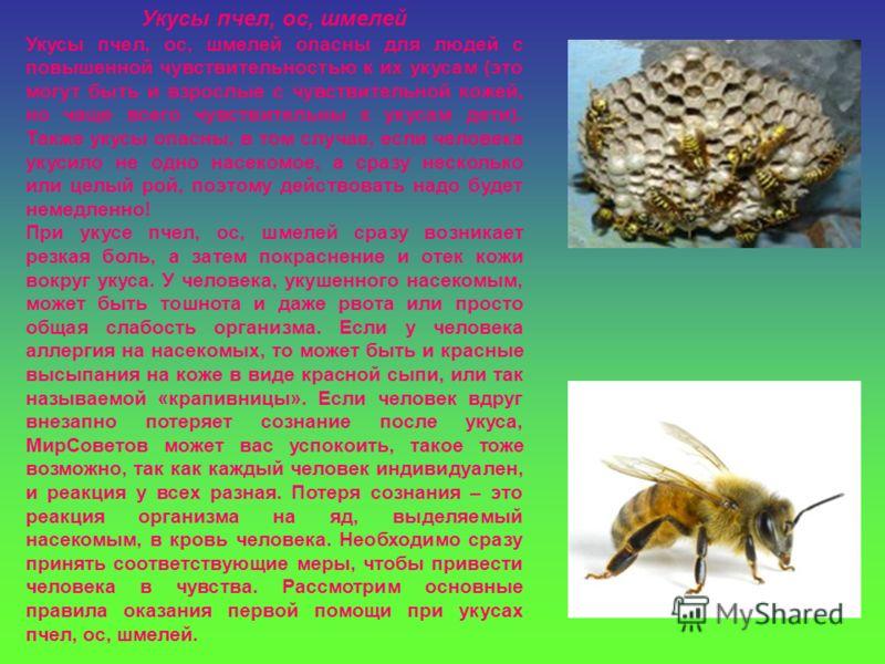 Укусы пчел, ос, шмелей Укусы пчел, ос, шмелей опасны для людей с повышенной чувствительностью к их укусам (это могут быть и взрослые с чувствительной кожей, но чаще всего чувствительны к укусам дети). Также укусы опасны, в том случае, если человека у