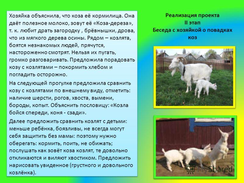 Реализация проекта II этап Беседа с хозяйкой о повадках коз Хозяйка объяснила, что коза её кормилица. Она даёт полезное молоко, зовут её «Коза-дереза», т. к. любит драть загородку, брёвнышки, дрова, что из мягкого дерева осины. Рядом – козлята, боятс