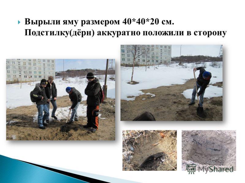 Вырыли яму размером 40*40*20 см. Подстилку(дёрн) аккуратно положили в сторону