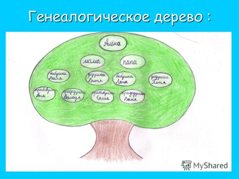 Генеалогическое дерево :