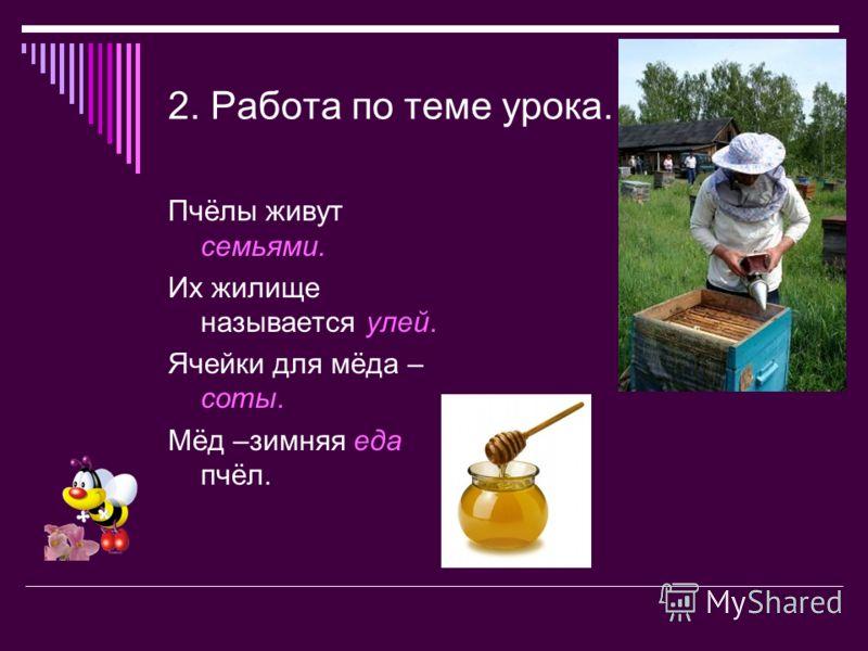 2. Работа по теме урока. Пчёлы живут семьями. Их жилище называется улей. Ячейки для мёда – соты. Мёд –зимняя еда пчёл.