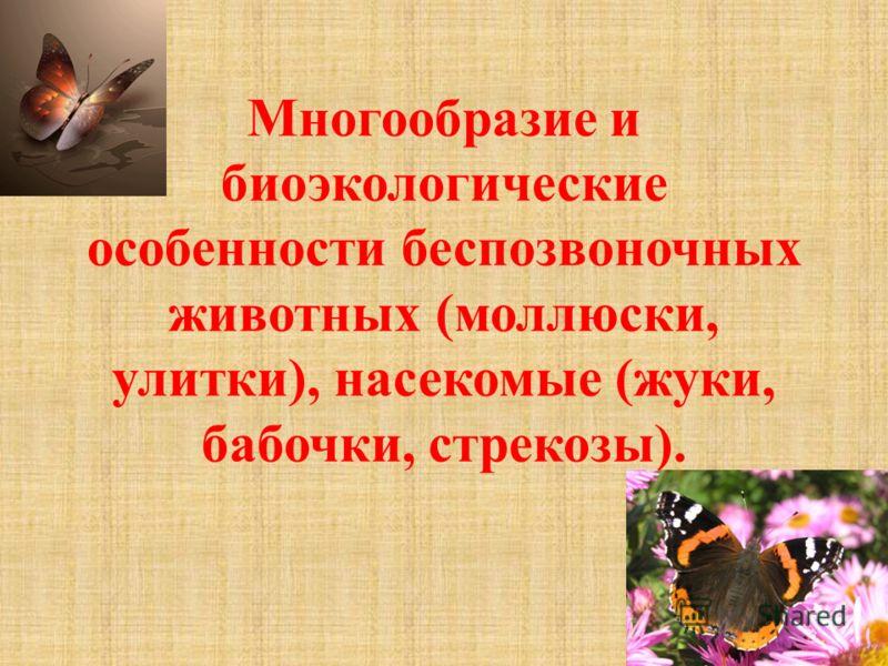 Многообразие и биоэкологические особенности беспозвоночных животных (моллюски, улитки), насекомые (жуки, бабочки, стрекозы).