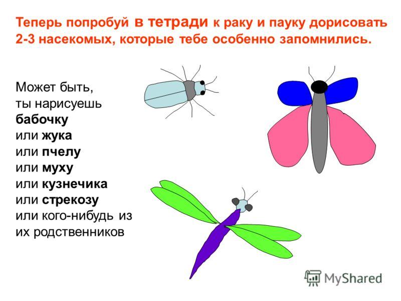 Теперь попробуй в тетради к раку и пауку дорисовать 2-3 насекомых, которые тебе особенно запомнились. Может быть, ты нарисуешь бабочку или жука или пчелу или муху или кузнечика или стрекозу или кого-нибудь из их родственников
