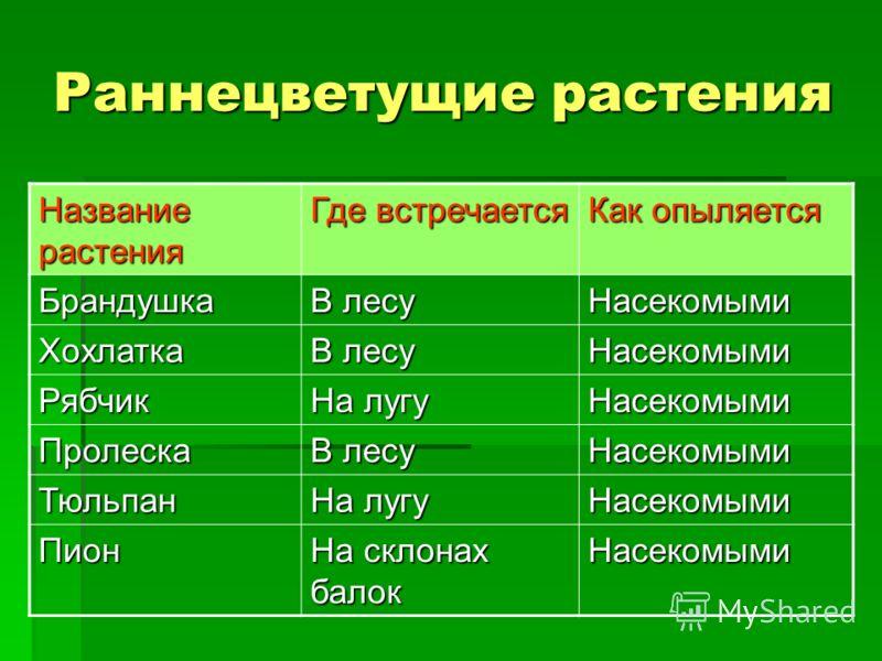 Многие раннецветущие растения Самойловского района занесены в Красную книгу области. Многие раннецветущие растения Самойловского района занесены в Красную книгу области.
