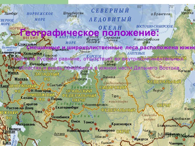 Географическое положение: областях и вновь появляется в южной части Дальнего Востока. тайги на Русской равнине, отсутствует во внутриконтинентальных Смешанные и широколиственные леса расположена южнее