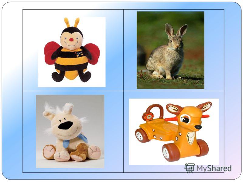 Заяц – живой, а не игрушка.