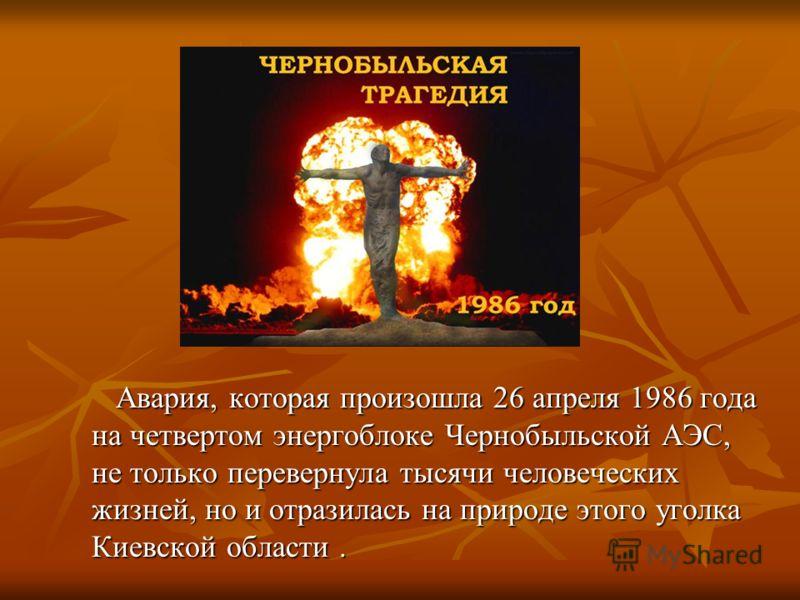 Авария, которая произошла 26 апреля 1986 года на четвертом энергоблоке Чернобыльской АЭС, не только перевернула тысячи человеческих жизней, но и отразилась на природе этого уголка Киевской области. Авария, которая произошла 26 апреля 1986 года на чет