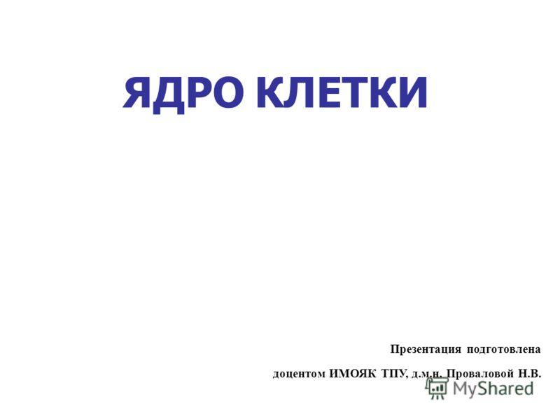 ЯДРО КЛЕТКИ Презентация подготовлена доцентом ИМОЯК ТПУ, д.м.н. Проваловой Н.В.