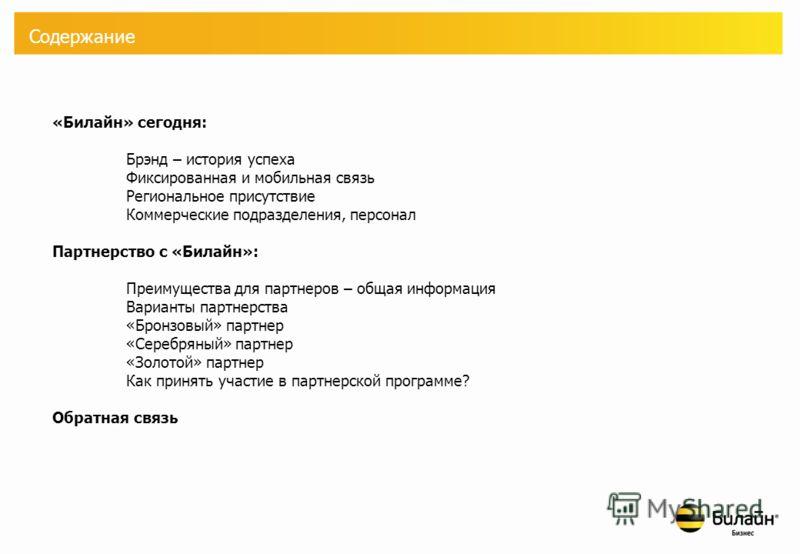 Партнерская программа «Билайн» - бизнес ОАО «ВымпелКом», 2008 г.