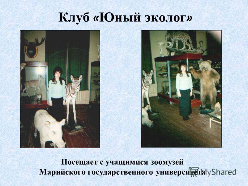 Клуб « Юный эколог » Посещает с учащимися зоомузей Марийского государственного университета