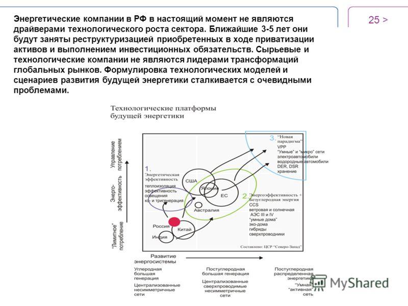 Энергетические компании в РФ в настоящий момент не являются драйверами технологического роста сектора. Ближайшие 3-5 лет они будут заняты реструктуризацией приобретенных в ходе приватизации активов и выполнением инвестиционных обязательств. Сырьевые