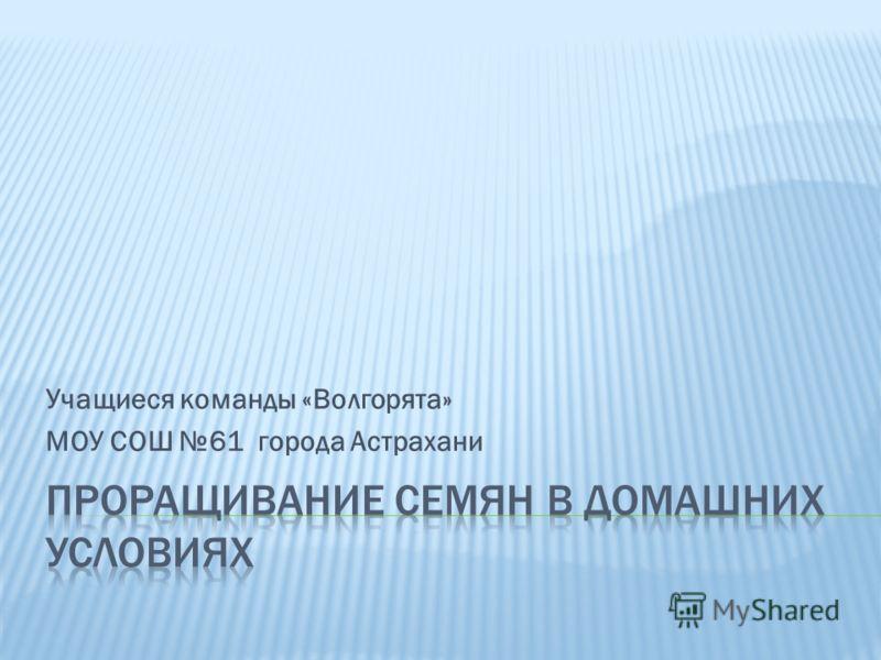 Учащиеся команды «Волгорята» МОУ СОШ 61 города Астрахани