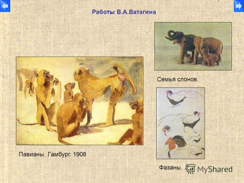 Работы В.А.Ватагина Павианы. Гамбург. 1908 Семья слонов. Фазаны.