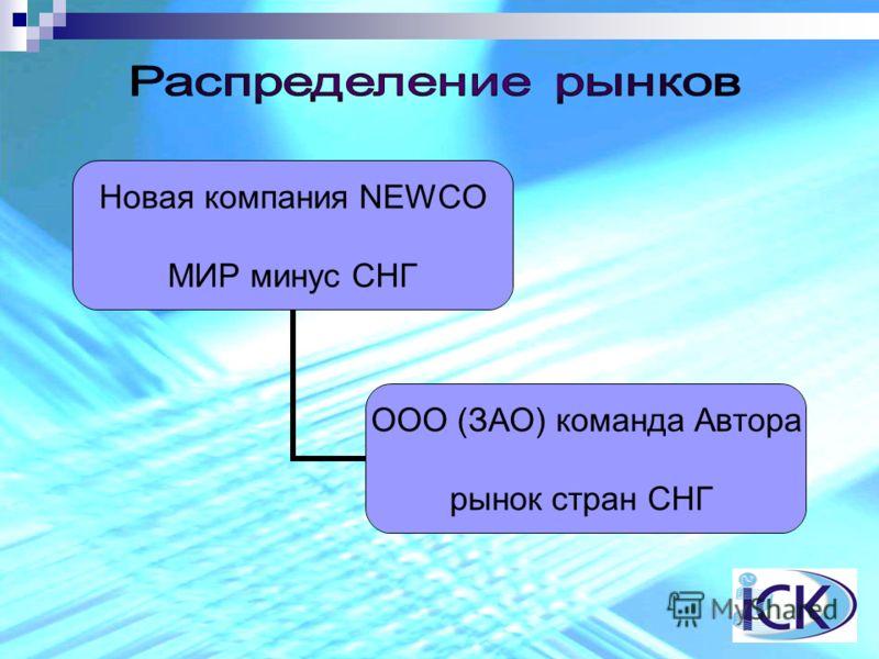 Новая компания NEWCO МИР минус СНГ ООО (ЗАО) команда Автора рынок стран СНГ