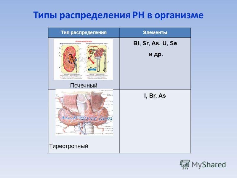 Типы распределения РН в организме Тип распределенияЭлементы Почечный Bi, Sr, As, U, Se и др. Тиреотропный I, Br, As