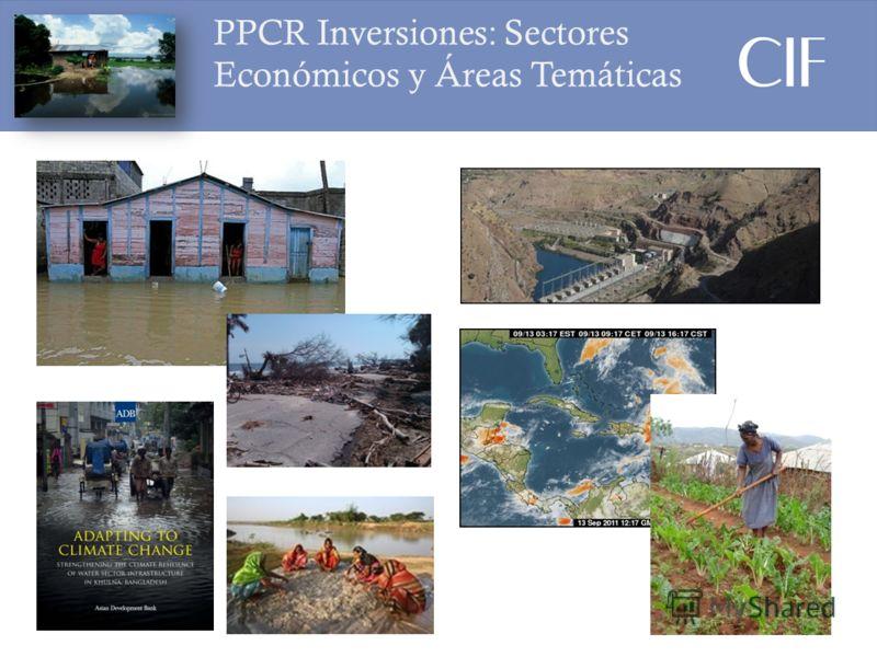 PPCR Inversiones: Sectores Económicos y Áreas Temáticas (PPCR) 6