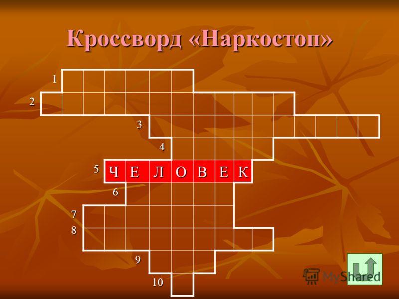 Кроссворд «Наркостоп» 1 2 3 4 5ЧЕЛОВЕК 6 7 8 9 10 10