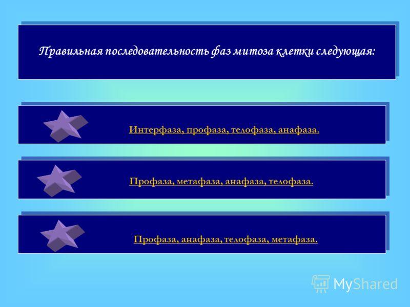 Правильная последовательность фаз митоза клетки следующая: Интерфаза, профаза, телофаза, анафаза. Профаза, метафаза, анафаза, телофаза. Профаза, анафаза, телофаза, метафаза.