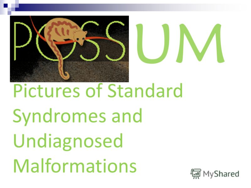 UM Pictures of Standard Syndromes and Undiagnosed Malformations