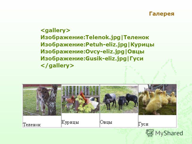 Галерея Изображение:Telenok.jpg|Теленок Изображение:Petuh-eliz.jpg|Курицы Изображение:Ovcy-eliz.jpg|Овцы Изображение:Gusik-eliz.jpg|Гуси