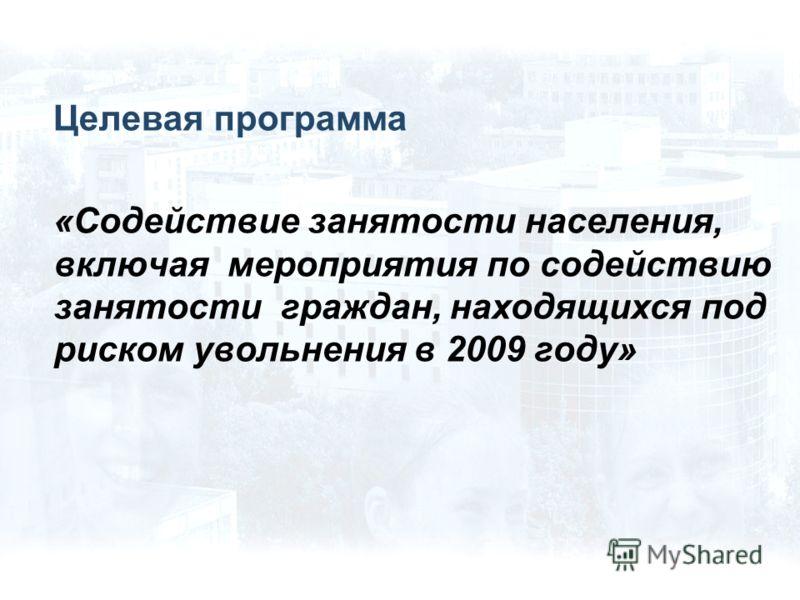 Целевая программа «Содействие занятости населения, включая мероприятия по содействию занятости граждан, находящихся под риском увольнения в 2009 году»
