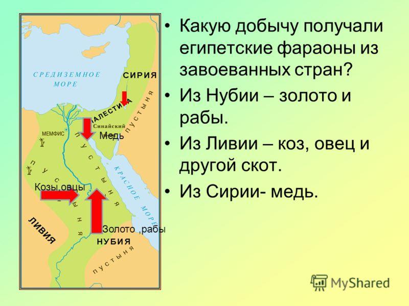 Военные Походы Фараонов 5 Класс Презентация