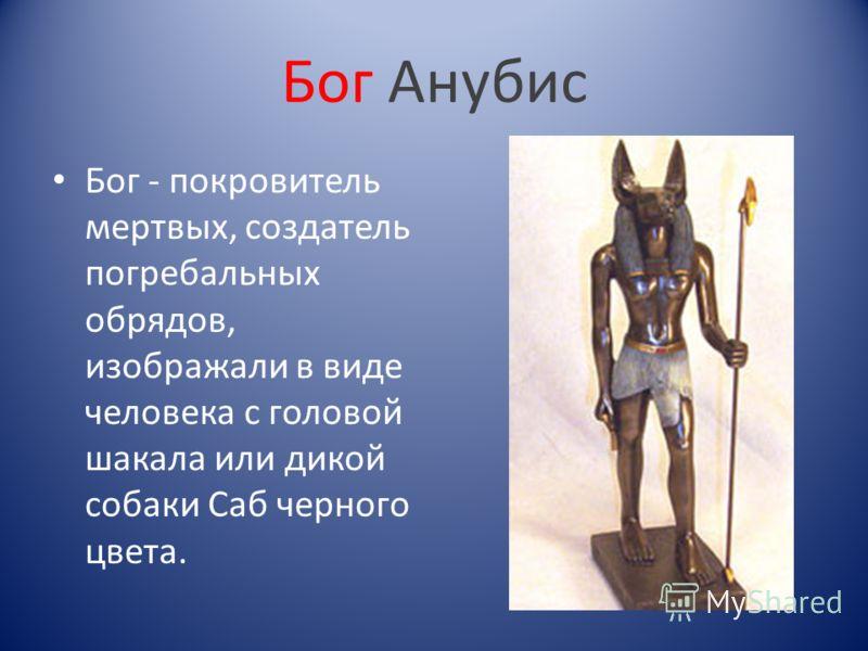 Бог Анубис Бог - покровитель мертвых, создатель погребальных обрядов, изображали в виде человека с головой шакала или дикой собаки Саб черного цвета.