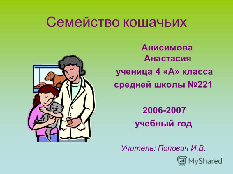 Семейство кошачьих Анисимова Анастасия ученица 4 «А» класса средней школы 221 2006-2007 учебный год Учитель: Попович И.В.