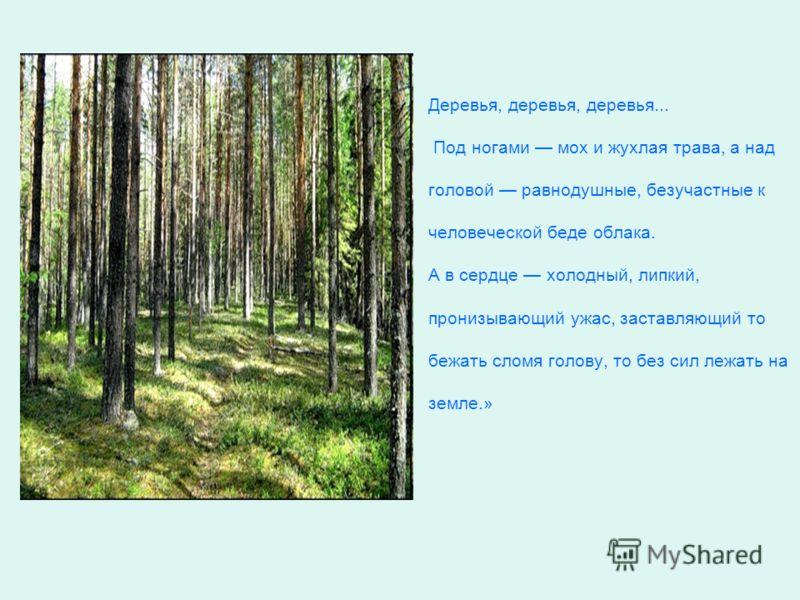 Деревья, деревья, деревья... Под ногами мох и жухлая трава, а над головой равнодушные, безучастные к человеческой беде облака. А в сердце холодный, липкий, пронизывающий ужас, заставляющий то бежать сломя голову, то без сил лежать на земле.»