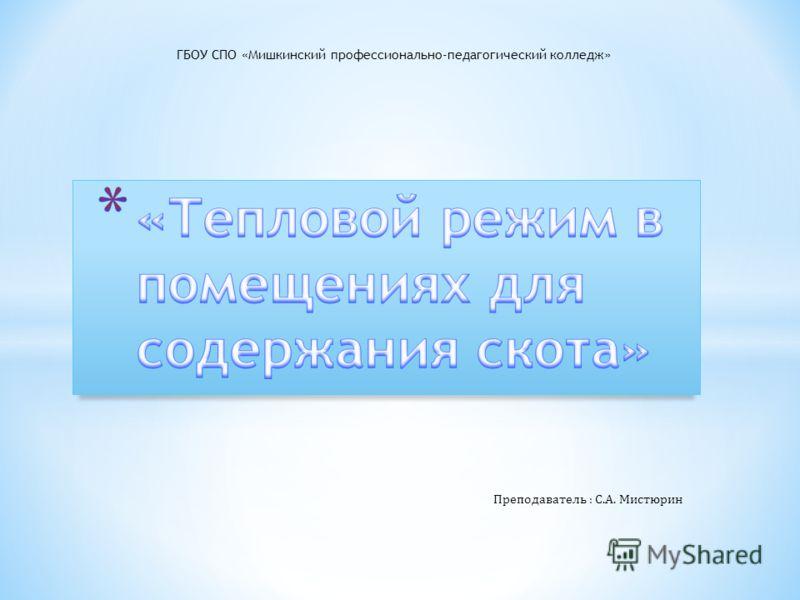 ГБОУ СПО «Мишкинский профессионально-педагогический колледж» Преподаватель : С.А. Мистюрин