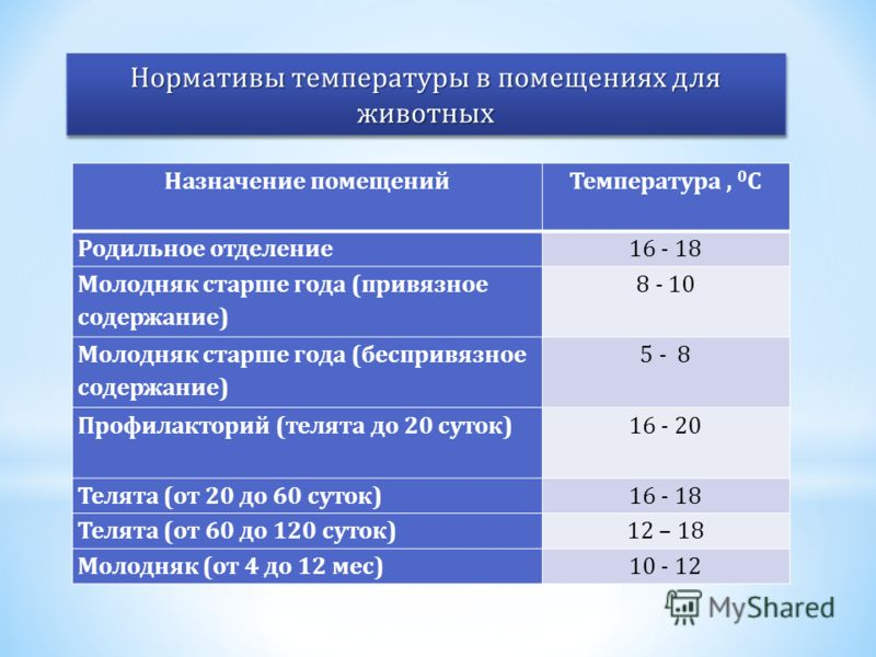 Назначение помещенийТемпература, 0 С Родильное отделение16 - 18 Молодняк старше года (привязное содержание) 8 - 10 Молодняк старше года (беспривязное содержание) 5 - 8 Профилакторий (телята до 20 суток)16 - 20 Телята (от 20 до 60 суток)16 - 18 Телята