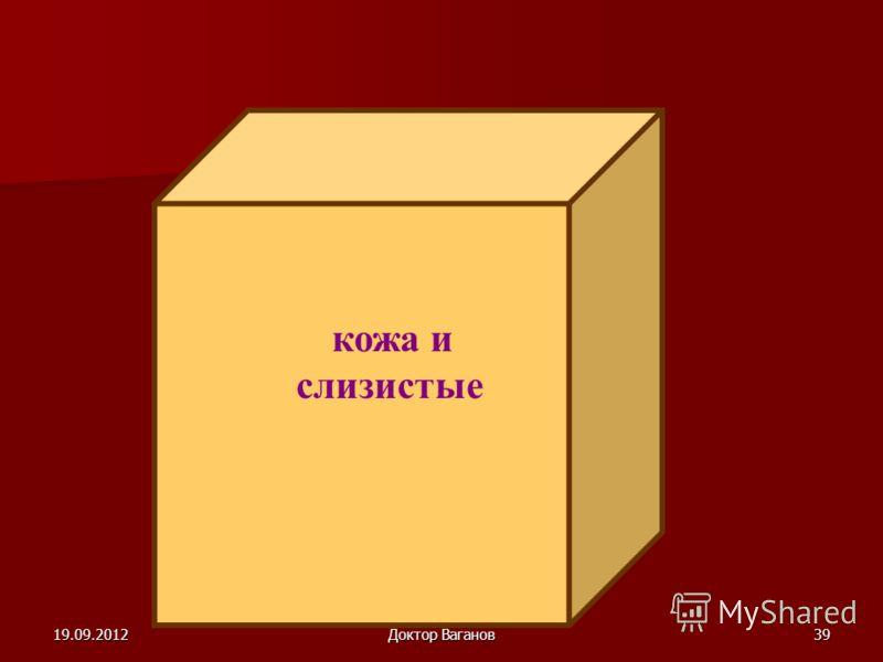 19.09.2012Доктор Ваганов38 ВОСПАЛЕНИЕ