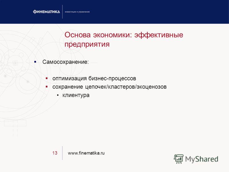 www.finematika.ru13 Основа экономики: эффективные предприятия Самосохранение: оптимизация бизнес-процессов сохранение цепочек/кластеров/экоценозов клиентура