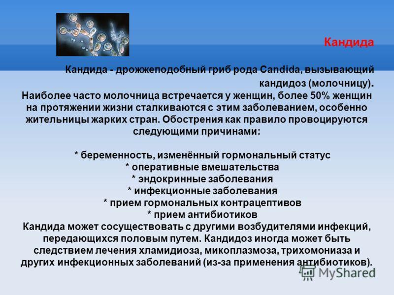Кандида Кандида - дрожжеподобный гриб рода Candida, вызывающий кандидоз (молочницу). Наиболее часто молочница встречается у женщин, более 50% женщин на протяжении жизни сталкиваются с этим заболеванием, особенно жительницы жарких стран. Обострения ка