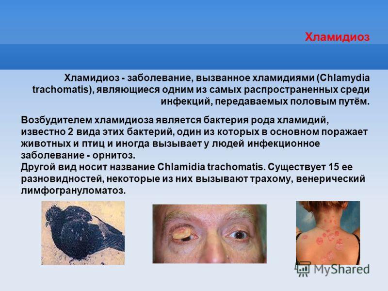 Хламидиоз Хламидиоз - заболевание, вызванное хламидиями (Chlamydia trachomatis), являющиеся одним из самых распространенных среди инфекций, передаваемых половым путём. Возбудителем хламидиоза является бактерия рода хламидий, известно 2 вида этих бакт