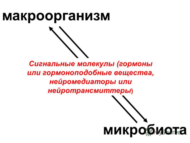 макроорганизм микробиота Сигнальные молекулы (гормоны или гормоноподобные вещества, нейромедиаторы или нейротрансмиттеры )