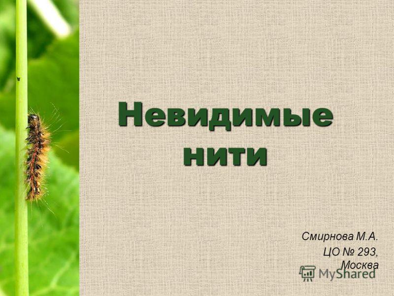 Невидимые нити Смирнова М.А. ЦО 293, Москва