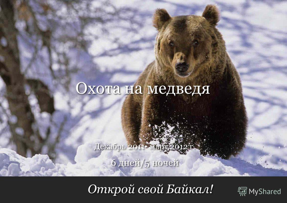 Открой свой Байкал! 6 дней/5 ночей Декабрь 2011- март 2012 г. Охота на медведя