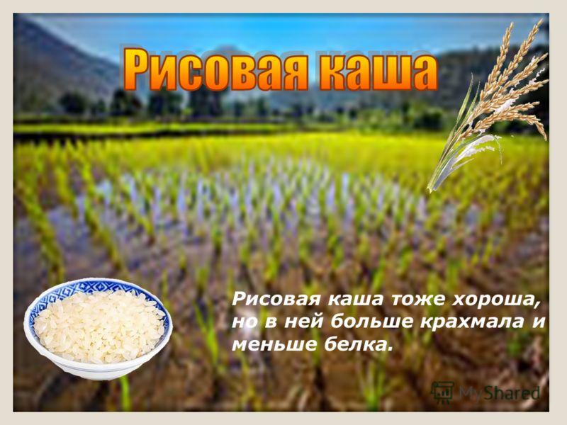 Рисовая каша тоже хороша, но в ней больше крахмала и меньше белка.