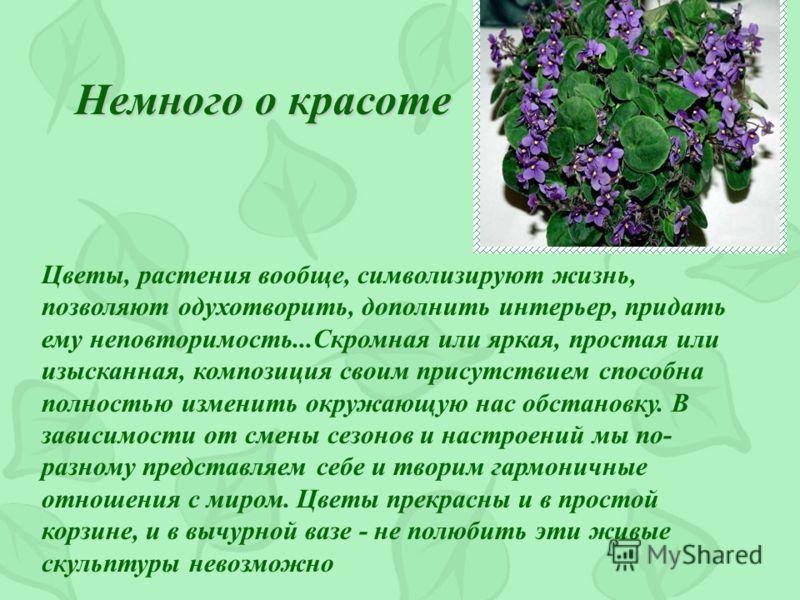 Комнатный садик Никто не любит жить в одиночестве: ни мы, люди, ни животные. Растения тоже живут в сообществе и взаимно влияют друг на друга В качестве
