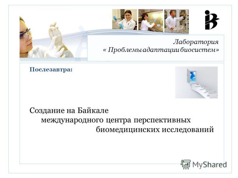 Лаборатория « Проблемы адаптации биосистем» Создание на Байкале международного центра перспективных биомедицинских исследований Послезавтра: