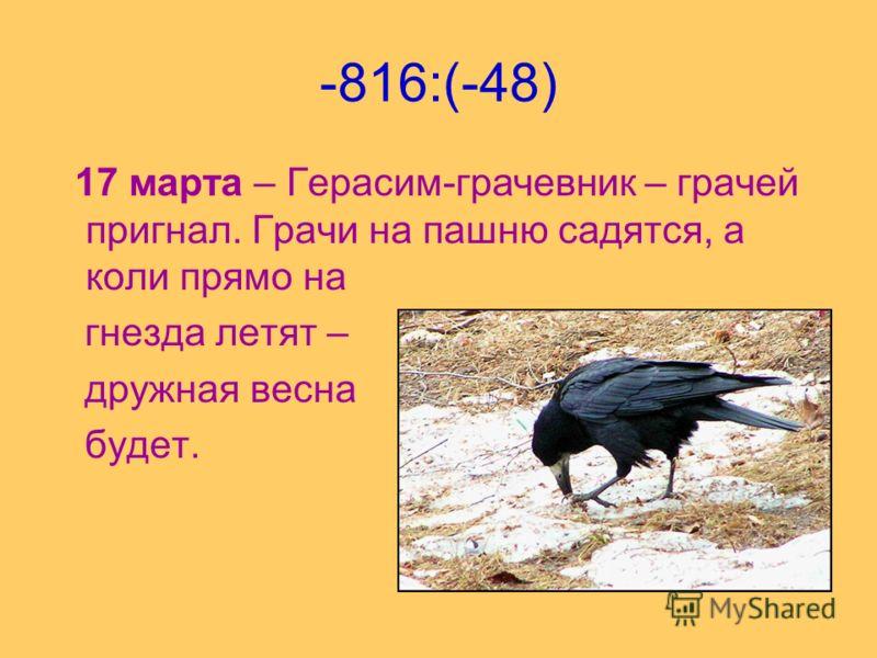 -816:(-48) 17 марта – Герасим-грачевник – грачей пригнал. Грачи на пашню садятся, а коли прямо на гнезда летят – дружная весна будет.